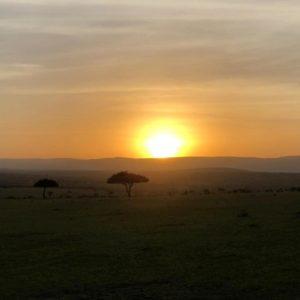 Kenya morning