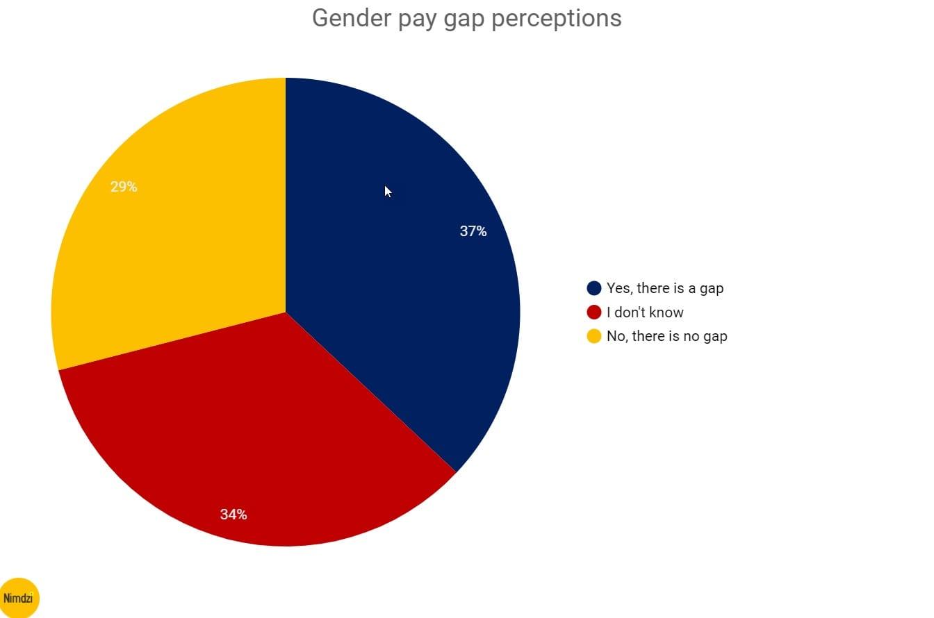 The-feminine-genius-gender-pay-gap-perceptions